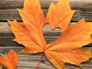 Your DMV Guide to Fall-Inspired Fun!
