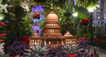 Season's Greenings Train Display at the US Botanic Garden ~