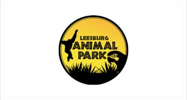 Leesburg Animal Park | Summer Camps