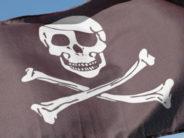 Ahoy Mateys! Pirate Ship Adventures on the High Seas